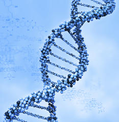 only two percent of our dna are actually useful, scientists reveal